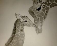 Giraffe(n)